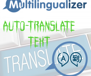 multi-auto-translate-image