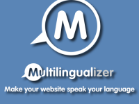 Multilingualizer - 1-website-license-max-2-languages